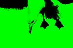 Green 16
