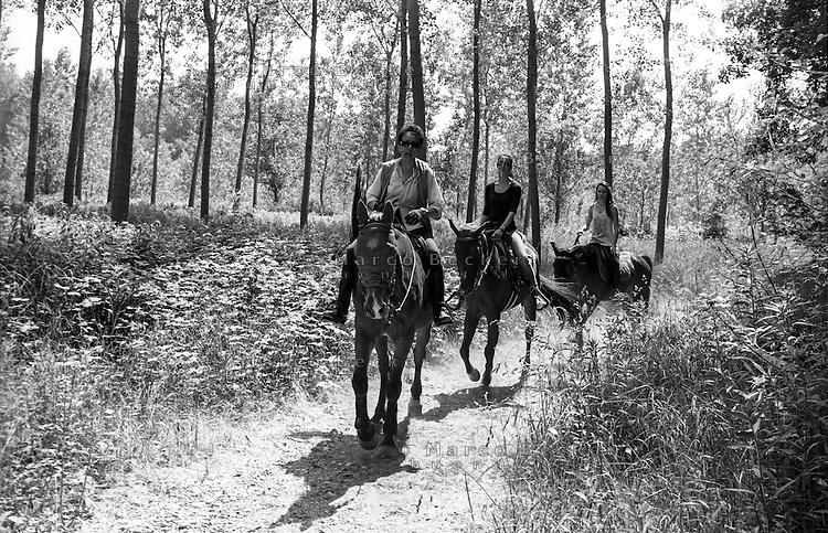 Parco del Ticino  presso Motta Visconti (provincia di Milano). Tre donne a cavallo --- Park of Ticino river near Motta Visconti (Province of Milan). Three women riding horses