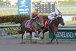 January 16, 2016: #1 Mom'z Laugh (FL) with jockey Javier Castellano on board wins the Sunshine Millions Distaff at Gulfstream Park in Hallandale Beach, FL.  Liz Lamont/ESW/CSM