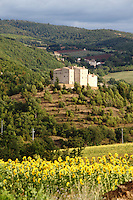 Near Todi: A beautiful view of the countryside, with a group of old building on the top of a hill, enlightened by the sun of the late afternoon, under a partially cloudy sky. There is a field of sunflowerfs in foreground.