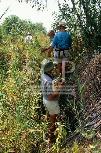Lukulu, Zambia, Africa. Ecotourists on safari with birdwatching book.