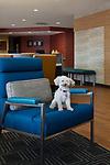 TownePlace Suites Austin Round Rock | Marriott International