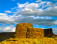 Fort Bottom Ruin, Canyonlands National Park, Utah  Ancient Native American ruin along Green River