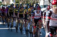 Fernando Gaviria (COL/UAE-Emirates)<br /> <br /> Stage 6 from Castelraimondo to Lido di Fermo (169km)<br /> <br /> 56th Tirreno-Adriatico 2021 (2.UWT) <br /> <br /> ©kramon