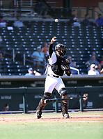 Franklin Torres - Mesa Solar Sox - 2019 Arizona Fall League (Bill Mitchell)