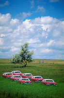 A group of abandoned cars of the same make, model and color in a rural field.