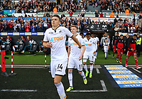 (L-R) Tom Carroll and Sam Clucas of Swansea City  take to the pitch during the Premier League match between Swansea City and Watford at The Liberty Stadium, Swansea, Wales, UK. Saturday 23 September 2017