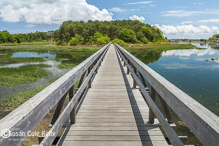 Uncle Tim's Bridge on Duck Creek in Wellfleet, Cape Cod, Massachusetts, USA