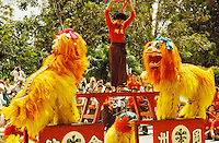 Chinese lion dance troupe entertaining tourists in Singapore.
