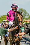 June 5, 2021: Casa Creed, #2, ridden by jockey Junior Alvarado, wins the Jackpot Jaipur Win and You're In Stakes on Belmont Stakes Day at the Belmont Stakes Festival at Belmont Park in Elmont, New York. Sue Kawczynski/Eclipse Sportswire/CSM