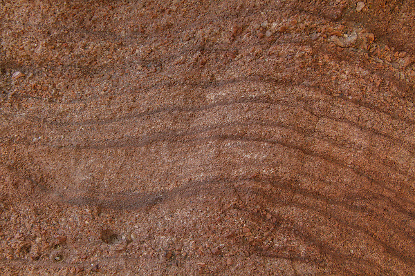 Sandstone pattern in Red Rocks State Park, Colorado .  John offers private photo tours and workshops throughout Colorado. Year-round.