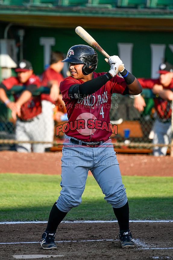 Meibrys Viloria (4) of the Idaho Falls Chukars at bat against the Ogden Raptors in Pioneer League action at Lindquist Field on June 28, 2016 in Ogden, Utah. The Raptors defeated the Chukars 12-11. (Stephen Smith/Four Seam Images)
