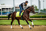 LOUISVILLE, KY - MAY 03: Bolt d'Oro, trained by Mick Ruis, exercises in preparation for the Kentucky Derby at Churchill Downs on May 3, 2018 in Louisville, Kentucky. (Photo by Alex Evers/Eclipse Sportswire/Getty Images)