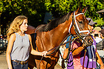 SEPT 06, 2021: POWER AGENDA in the Gr.1 Hopeful  Stakes, for 2-year olds, going 7 furlongs, at Saratoga Racecourse, Saratoga Springs, New York. Sue Kawczynski/Eclipse Sportswire/CSM