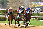 March 13, 2021: Shedaresthedevil #5 , ridden by Florent Geroux wins the Azeri Stakes  for trainer Brad H. Cox at Oaklawn Park in Hot Springs,  Arkansas. Ted McClenning/Eclipse Sportswire/CSM