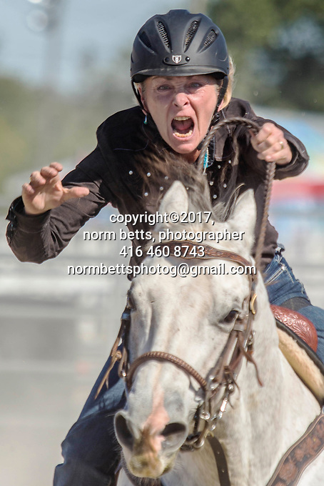 The RAM Rodeo Tour at the Markham Fair <br /> Markham, Ontario, Canada<br /> 30Sept and 01Oct 2017<br /> <br /> normbetts@canadianphotographer.com<br /> ©2017, Norm Betts, photographer<br /> 416 460 8743