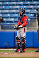 Potomac Nationals catcher Jakson Reetz (12) during the first game of a doubleheader against the Salem Red Sox on June 11, 2018 at Haley Toyota Field in Salem, Virginia.  Potomac defeated Salem 9-4.  (Mike Janes/Four Seam Images)