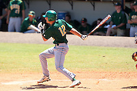 North Dakota State Bisons Tyler Steen #12 during a game vs Bradley Braves at Chain of Lakes Park in Winter Haven, Florida;  March 17, 2011.  Bradley defeated North Dakota State 6-5.  Photo By Mike Janes/Four Seam Images