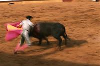 Europe/France/Aquitaine/64/Pyrénées-Atlantiques/Bayonne: Corrida dans les arènes lors des fêtes de Bayonne - Mise à mort du taureau par le torero