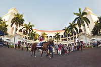 Pegasus World Cup Day 2020
