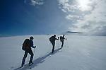 Montée en ski au sommet du Mitivagkat (973 m) au dessus d'Ammasalik Groënland (côte Est). Région d'Angmagssalik (Ammasalik ou Tassilaq). Ski climbing of Mitivagkat (973 mGreenland (East coast).
