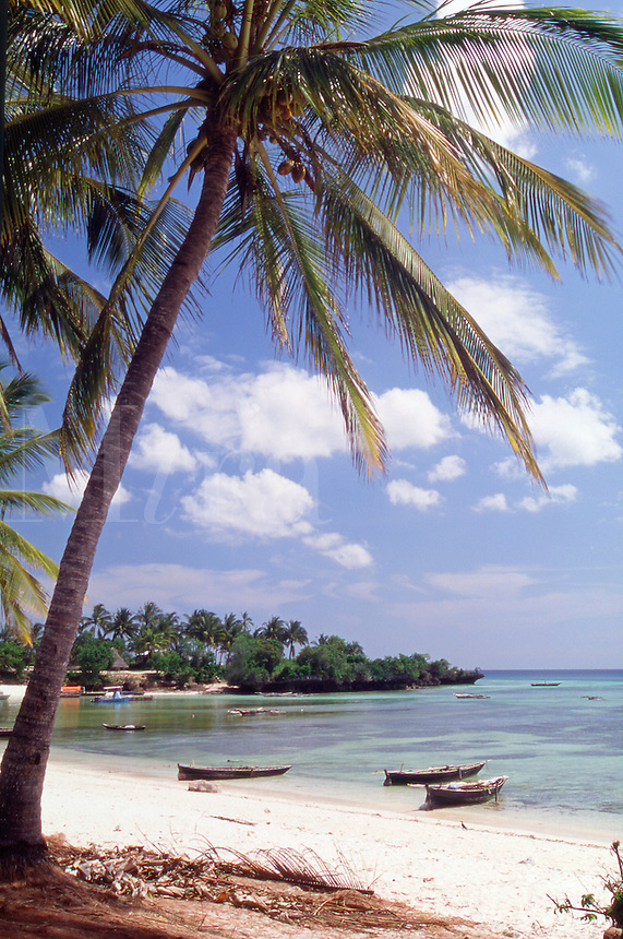 Tanzania Zanzibar The idyllic beach at Kizimkazi