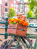 Assaf, CUTE ANIMALS, LUSTIGE TIERE, ANIMALITOS DIVERTIDOS, teddies, paintings,+Amsterdam, Bicycle, Bicycles, Bike, Bikes, Box, Bridge, Buildings, Bunch Of Flowers, Canal, Childhood, City, Cityscape, Color+, Colour Image, Cute, Cycle, Flowers, Love, Parked, Photography, Promenade, Railing, Road,Romance, Romantic, Street, Teddy Be+ar, Teddy Bears, Toy, Toys, Tulips, Urban Scene, Walkway,Amsterdam, Bicycle, Bicycles, Bike, Bikes, Box, Bridge, Buildings, B+unch Of Flowers, Canal, Childhood, City, Cityscape, Color, Colour Image, Cute, Cycle, Flowers, Love, Parked, Photography, Pro+,GBAFAF20160521,#ac#, EVERYDAY ,photos,photo