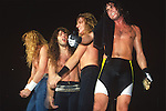 Various portraits & live photographs of the rock band, Megadeth.