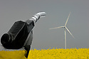 14/12/07 - LE MAGE - EURE ET LOIRE - FRANCE - Photomontage pour illustrer les biocarburants et les energies renouvelables - Photo Jerome CHABANNE