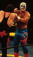 Sting1995<br /> Photo By John Barrett/PHOTOlink