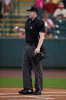 Umpire Mitch Leikam before a South Atlantic League game between the Greensboro Grasshoppers and Delmarva Shorebirds on August 21, 2019 at Arthur W. Perdue Stadium in Salisbury, Maryland.  Delmarva defeated Greensboro 1-0.  (Mike Janes/Four Seam Images)