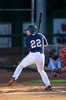 A.J. Murray (22) of the Elizabethton Twins at bat against the Johnson City Cardinals at Joe O'Brien Field on July 11, 2015 in Elizabethton, Tennessee.  The Twins defeated the Cardinals 5-1. (Brian Westerholt/Four Seam Images)