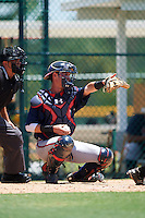 GCL Braves catcher Collin Yelich (30) points to field umpire Ben Rosen (not shown) for the call in front of home plate umpire Josh Gilreath during a game against the GCL Pirates on August 10, 2016 at Pirate City in Bradenton, Florida.  GCL Braves defeated the GCL Pirates 5-1.  (Mike Janes/Four Seam Images)