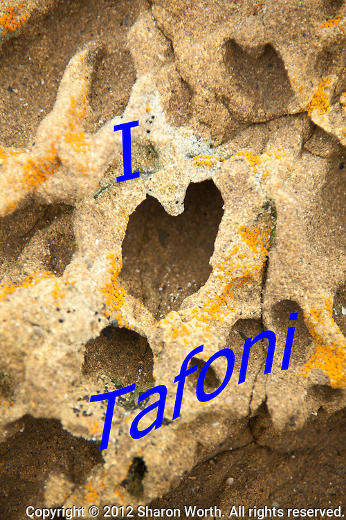 """A tofoni formation in the shape of a heart lends itself to the message, """"I Love Tafoni"""".  Bean Hollow State Beach on the California coast."""