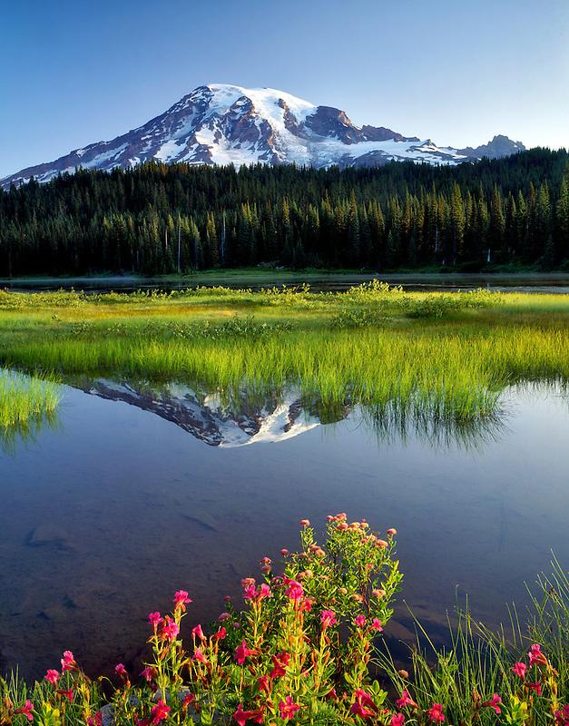 Mt. Rainier and Reflection Lake. Mt. Rainier National Park. Washington.