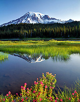 Mt. Rainier and Reflection Lake. Mt. Rainier National Park. Washington.