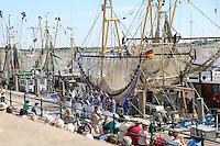 Seemannschor tritt auf im Hafen von Greetsiel