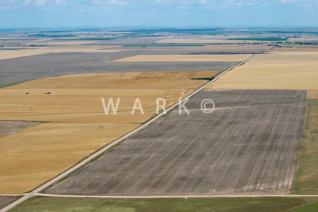Eastern Adams County, Colorado farmland. July 2014