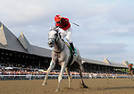 09 August 22: Careless Jewel (no. 5), ridden by Robert Landry and trained by Josie Carroll, wins the 129th running of the grade 1 Alabama Stakes for three year old fillies at Saratoga Race Track in Saratoga Springs, New York.