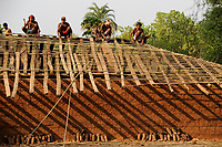 INDIA Chhattisgarh, Gond tribe, construct new house and roof in tribal village of Bastar / INDIEN Chhattisgarh , Adivasi Dorf in der Bastar Region, Adivasi sind die indischen Ureinwohner, Maenner bauen ein neues Hausdach, Gond Stamm
