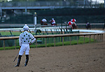 June 28, 2015  Sebastian Saez watches while outriders chased his loose two year old colt Naval War, who parted company with him in the post parade of Churchill Downs race 1.  ©Mary M. Meek/ESW/CSM