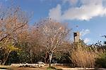 G-131 Botanical garden on Mount Scopus
