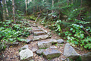 Old stone staircase along the Mt Tecumseh Trail in the White Mountains, New Hampshire.