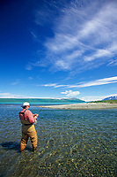 Man fly fishes for salon in the clear waters of Naknek lake, Katmai National Park, Alaska.