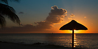 Colorful sunset with sunrays through a thatched roof parasol and palm tree silhouettes, on a white sand beach, Cozumel Island Caribbean Sea, Mexico