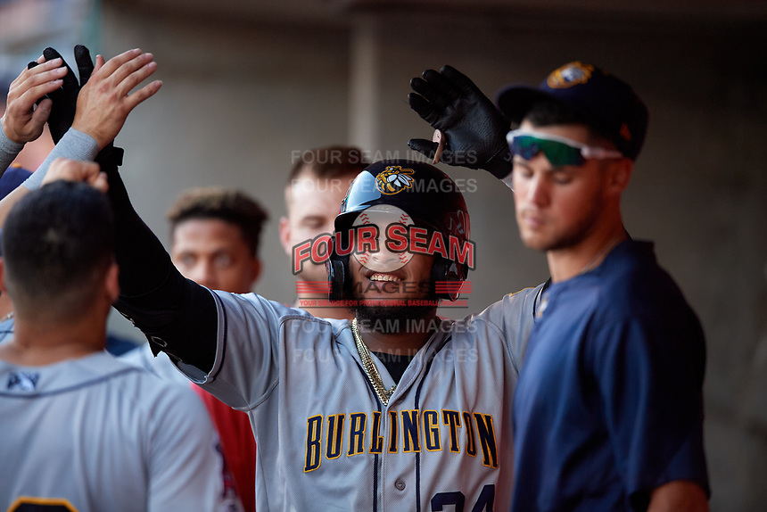 Burlington Bees Kevin Maitan (24) celebrates with teammates after hitting a home run during a Midwest League game against the Lansing Lugnuts on July 18, 2019 at Cooley Law School Stadium in Lansing, Michigan.  Lansing defeated Burlington 5-4.  (Mike Janes/Four Seam Images)