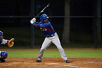 AZL Rangers William Jeffry (12) at bat during an Arizona League game against the AZL Dodgers Mota at Camelback Ranch on June 18, 2019 in Glendale, Arizona. AZL Dodgers Mota defeated AZL Rangers 13-4. (Zachary Lucy/Four Seam Images)
