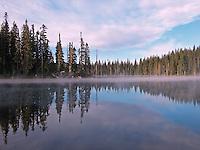 Horseshoe Lake, Gifford Pinchot National Forest, Randle, Washington, USA
