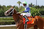 Mico Margarita with jockey Ricardo Santana Jr on board wins the Carry Back Stakes G3 at Calder Racecourse, Miami Gardens, FL 07-06-13, Summit Of Speed Day