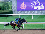 October 30, 2020: Dayoutoftheoffice, trained by trainer Timothy E. Hamm, exercises in preparation for the Breeders' Cup Juvenile Fillies at Keeneland Racetrack in Lexington, Kentucky on October 30, 2020. Scott Serio/Eclipse Sportswire/Breeders Cup/CSM